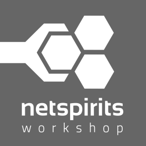 netspirits workshop