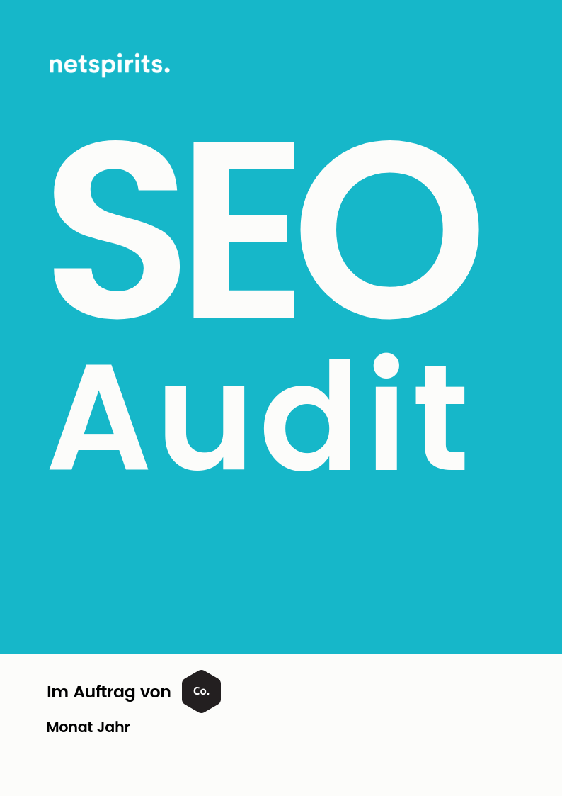 SEO-Audit von netspirits