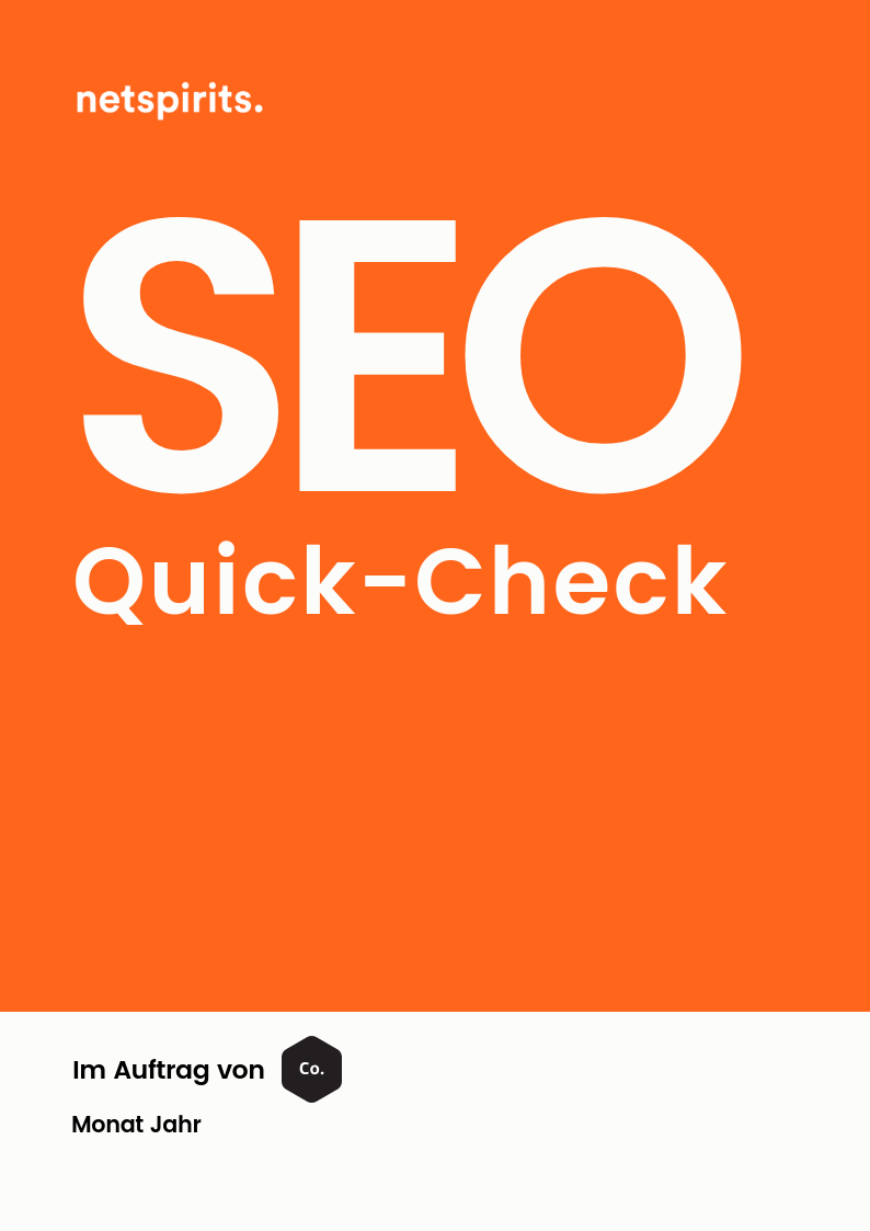 SEO-Quick-Check von netspirits