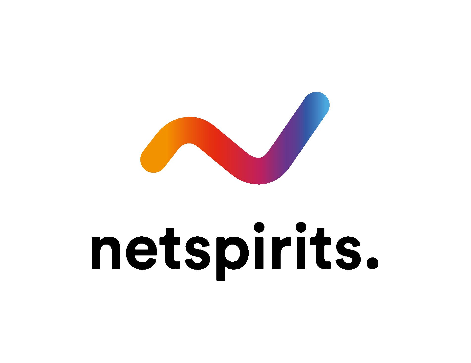 netspirits Logo